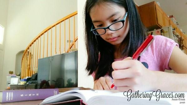 homeschool hard at work
